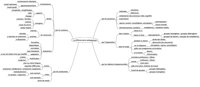 differenciation_pedagogique_carte_mentale