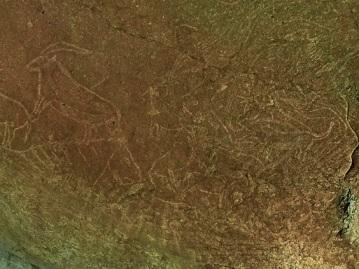 de-magnifiques-gravures-rupestres-decouvertes-sous-une-ville-espagnole