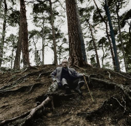j_r_r__tolkien_in_the_woods_colorized_by_oldhank-d7ut9bu