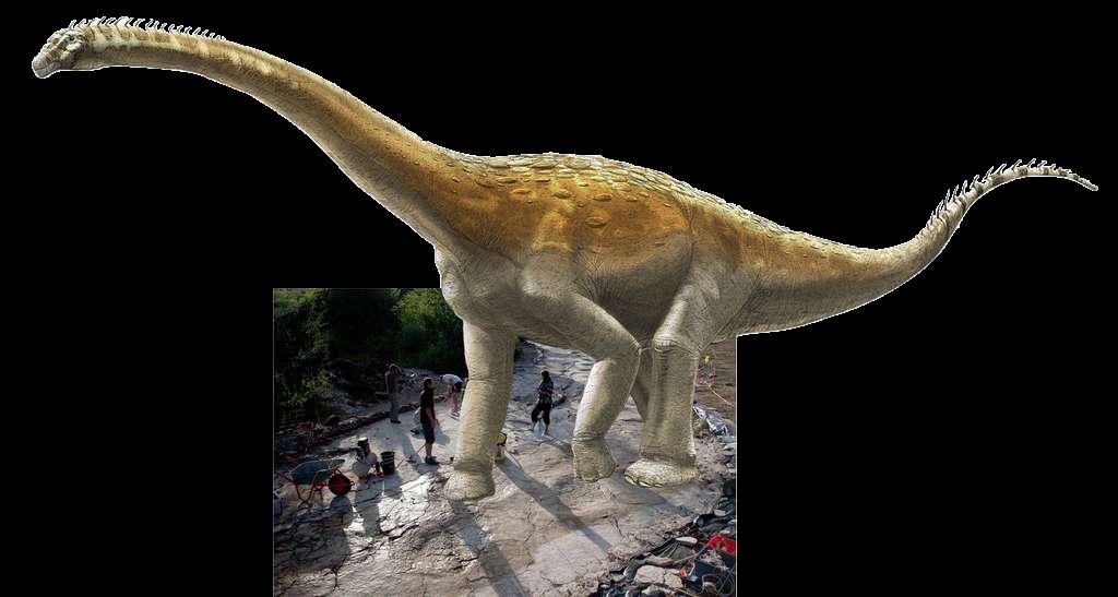 53aba28fea_114786_dinosaure-sauropode-de-plagne-empreinte-a-beneteau-photographie-dinojura